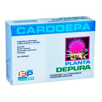 Salute-CARDOEPA: integratore disintossicante del fegato, epatoprotettore-60cps
